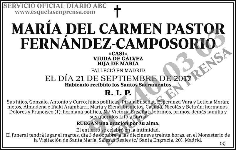 María del Carmen Pastor Fernández-Camposorio